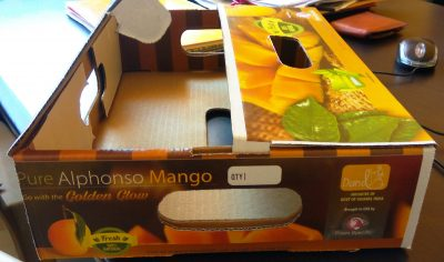 Mango Export Packaging Box MultiPack 4
