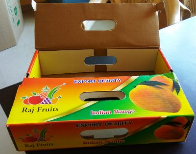 Mango Export Packaging Box MultiPack 2